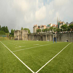 Bayonne Rugby Field - France