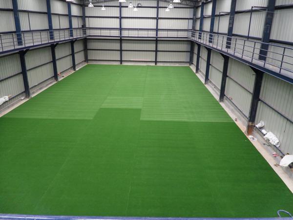 Maverick Turf Cricket Pitch