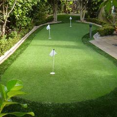 Maverick Turf Golf