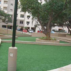 Artificial / Synthetic Grass